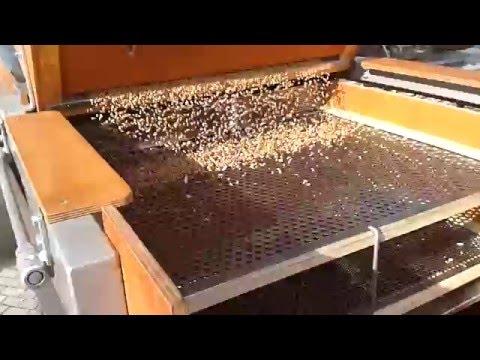 oxyuris vermicularis shqip a szívférget nem szívesen látjuk