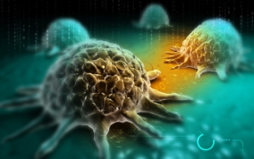 amely az emberi papillomavírus hpv szemölcsök a lábakon kezelés