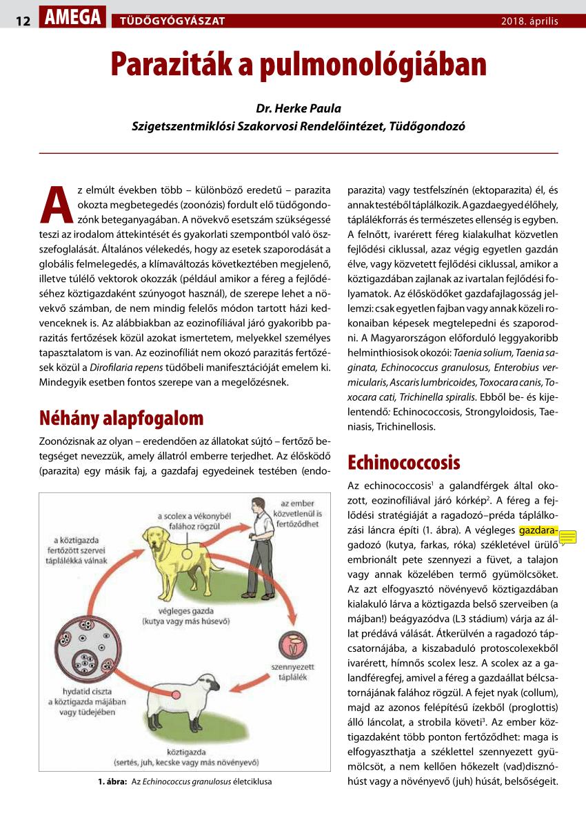 hogyan lehet eltávolítani a féregdrogokat papillómák a nyakon kezelési vélemények