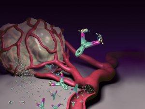 féregek a székben giardia parazita kutya