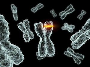 rák jóindulatú és rosszindulatú sejtjei