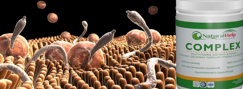 paraziták az emberekben és a kezelés