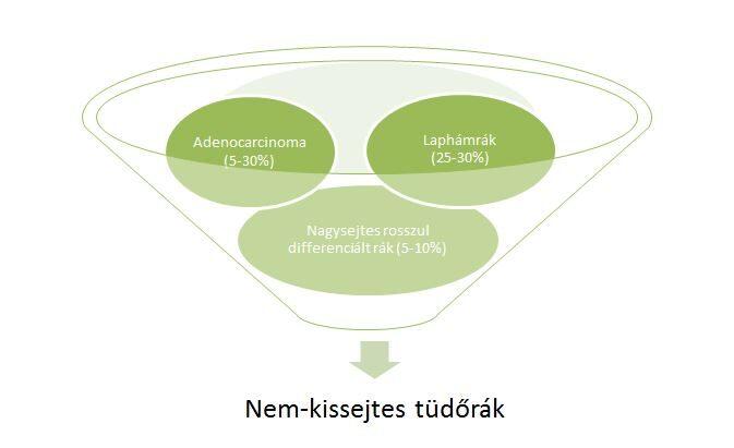 neuroendokrin tüdőrák