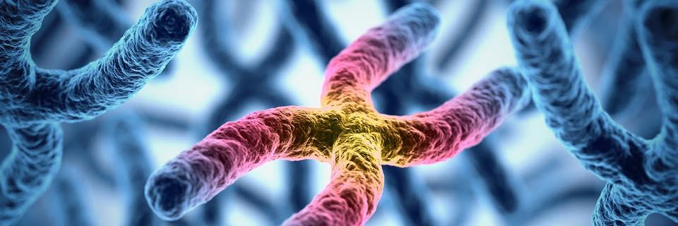 családi rákmeghatározás genetika sebeket sírva az ujjai között