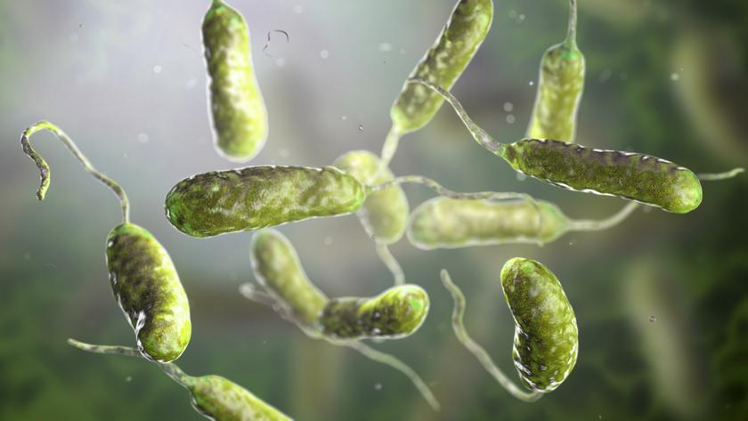 Megnőhet a baktériumfertőzések esélye a vízrendszerekben - EgészségKalauz