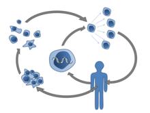 Immunonkológia