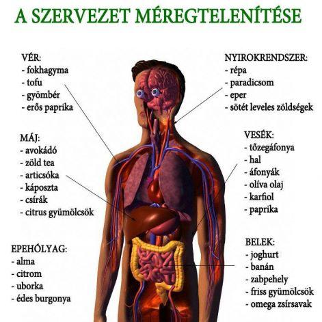 parazita diagnosztikai kezelése réteges férgek