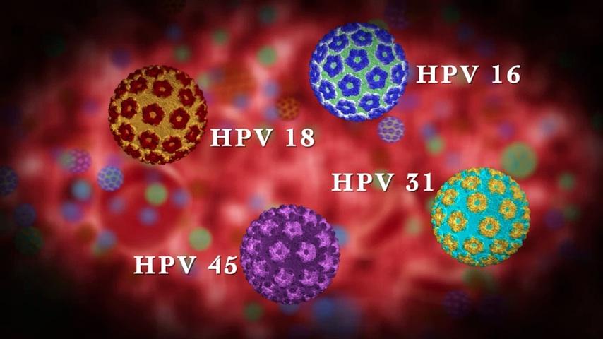 humán papillomavírus vakcina kölcsönhatások szarkóma rák meghatározása