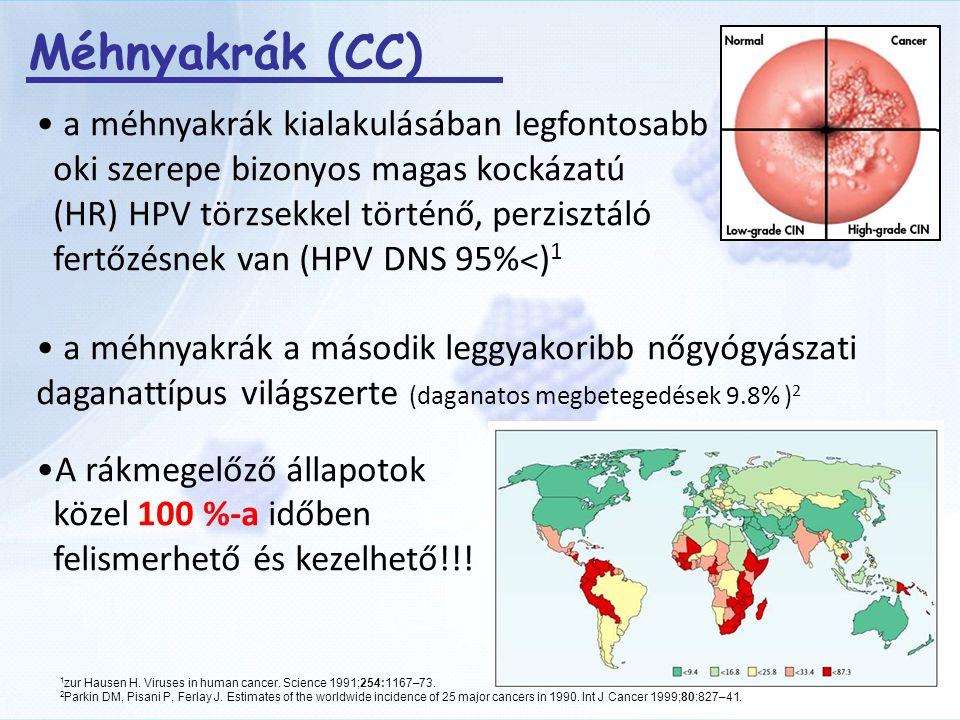hpv magas kockázatú csoport