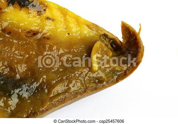 féreg mangó helminthosporium spórák
