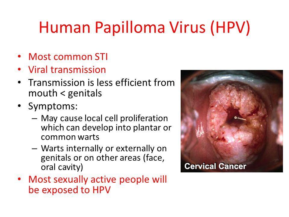 hpv vírus muskarci