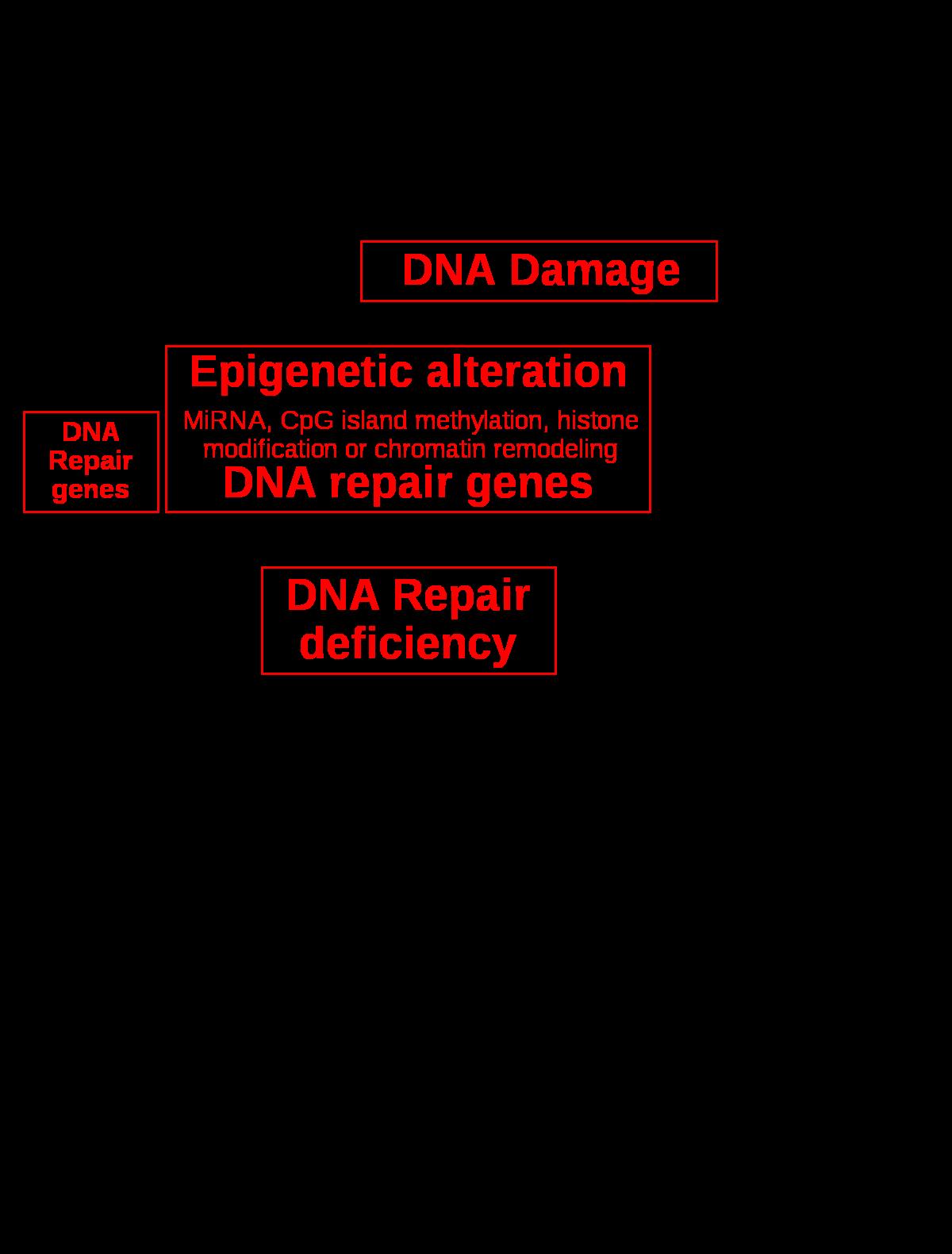 26-féle gén mutációit mutatja ki az új tumordiagnosztikai teszt