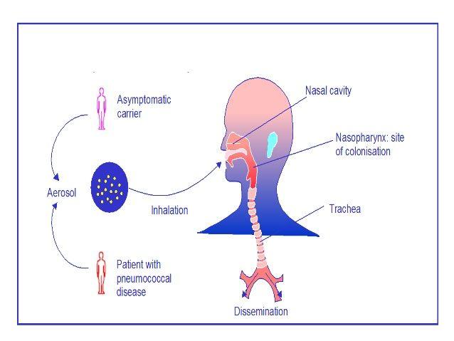 rák hodgkin s lymphoma