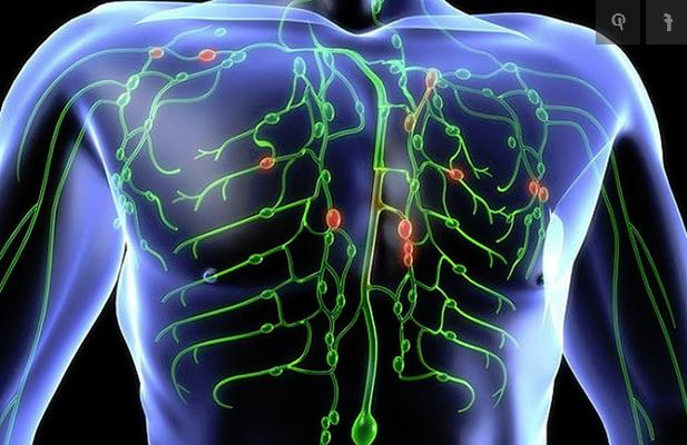a fonálférgek paraziták az emberben bakteriális rák vagy vírus