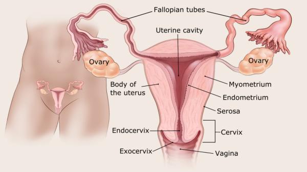 endometrium rák sugárterápia