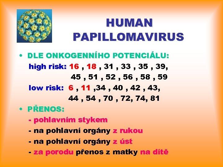 humán papillomavírus 6 11