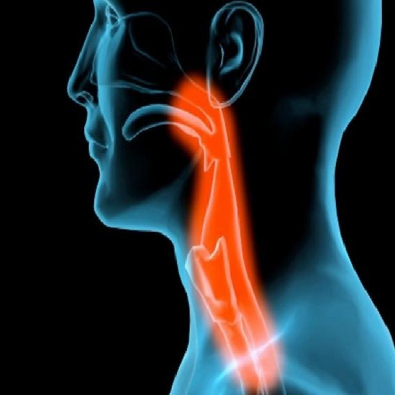 Ingyenes szájüregi rákszűrés a Semmelweis Egyetemen csütörtökön
