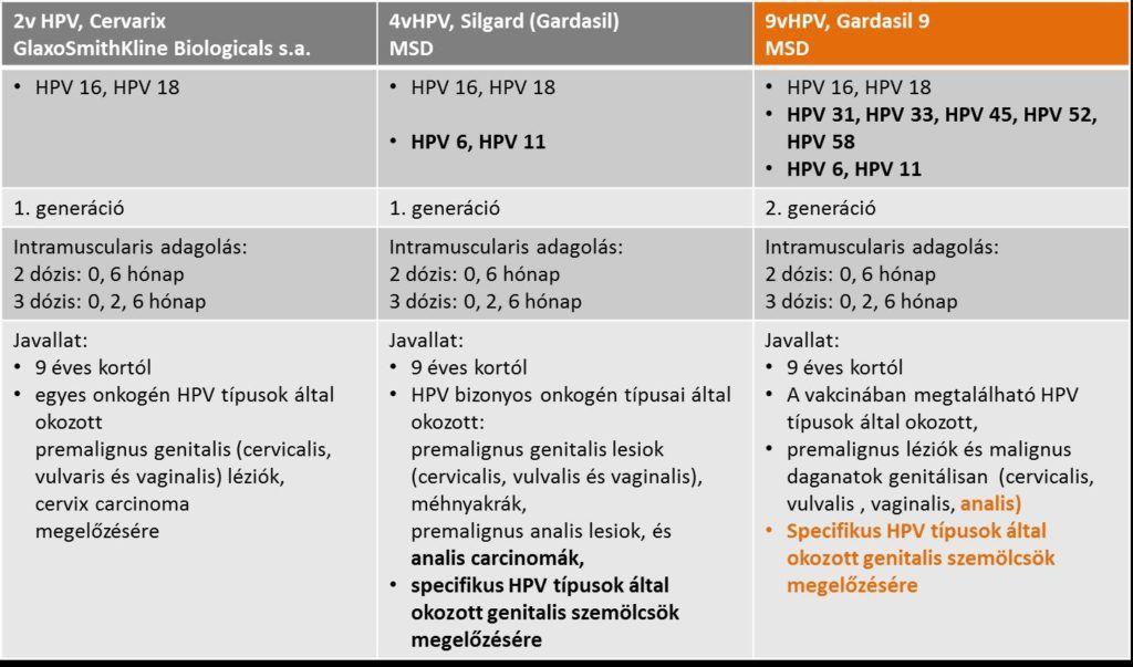 hpv típusok szám szerint