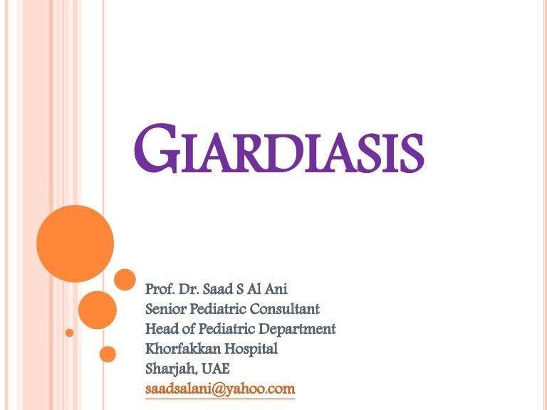Giardia bergen 2020, Badan: gyógyászati tulajdonságok és ellenjavallatok - Myoma