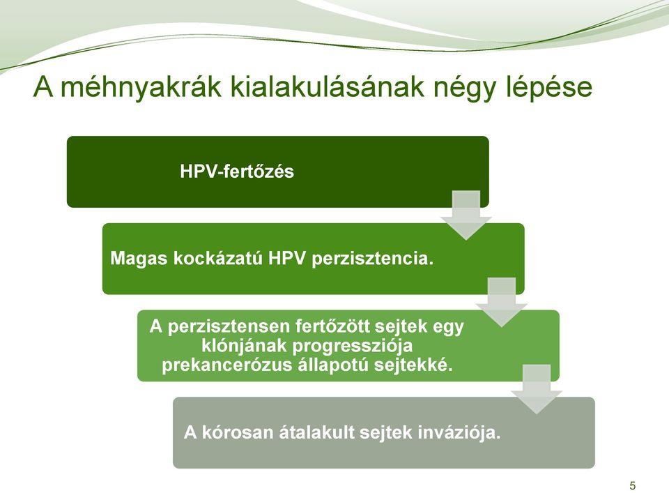 hpv vakcinatípusok
