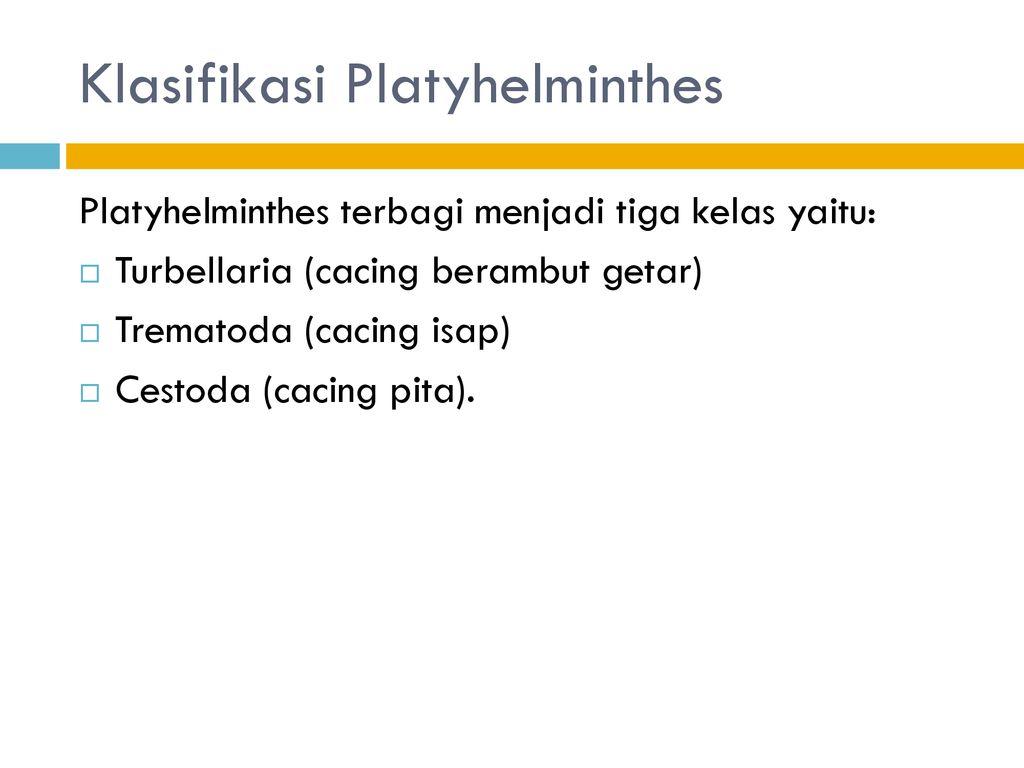 ppt platyhelminthes és nemathelminthes
