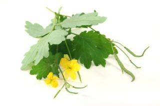 Elpusztítja a szemölcsöt, és aranyér ellen is beválik: a C-vitamin ezer arca - Egészség | Femina