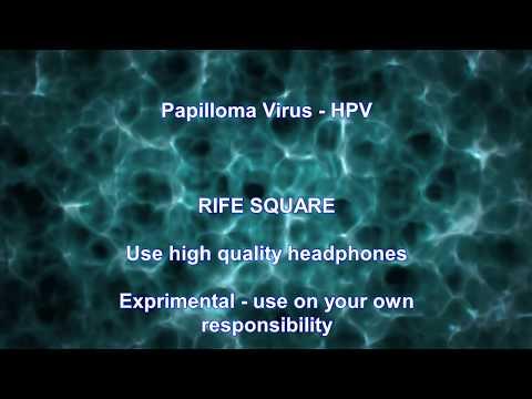 Újonnan felismert kockázati tényező: a humán papillomavírus | vadhibiscus.hu