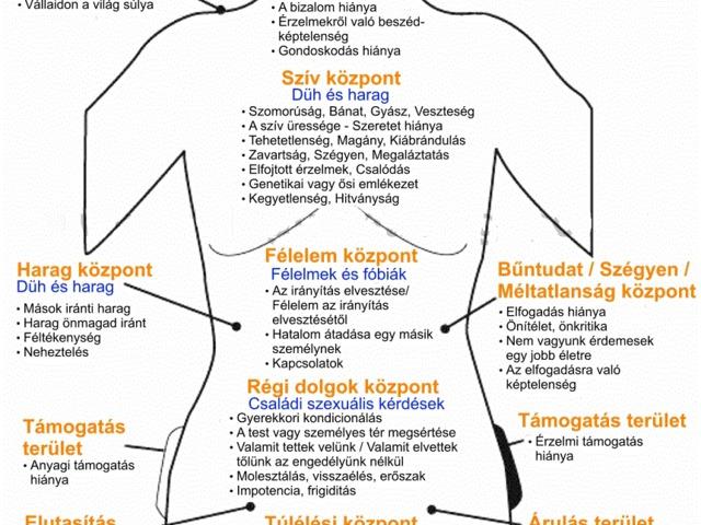Pszichoonkológia: A rák és a lélek csatája