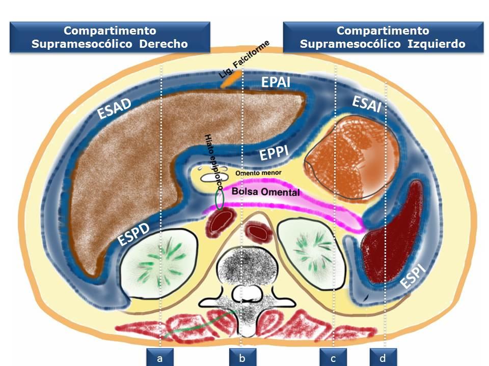 Az intraductalis papillómák eltávolítását el kell távolítani. Gyomorrák immunterápia