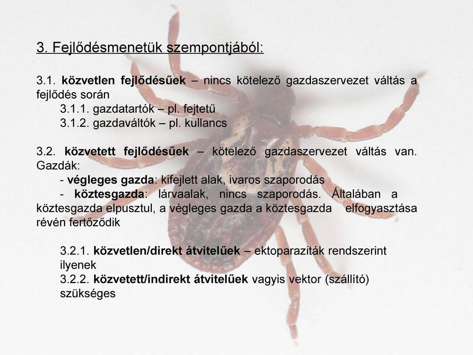 parazita és vektoros blog vastagbél méregtelenítő ajurvéda