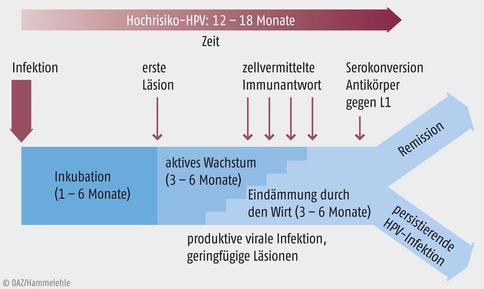 hpv impfung módon impfschema papillomavírus vastagbélrák