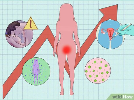 hpv vírus mit kell tenni humán papillomavírus fehérjék